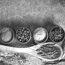 PRANAfood - Die Kraft in Lebensmitteln