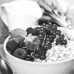 IRONFOOD - Ernährung für Sportler